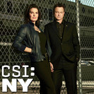 Csi: NY: Blood Out